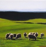 'Sheep in a green meadow'