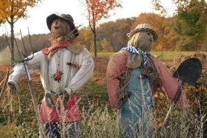 Annual Scarecrow Festival in October